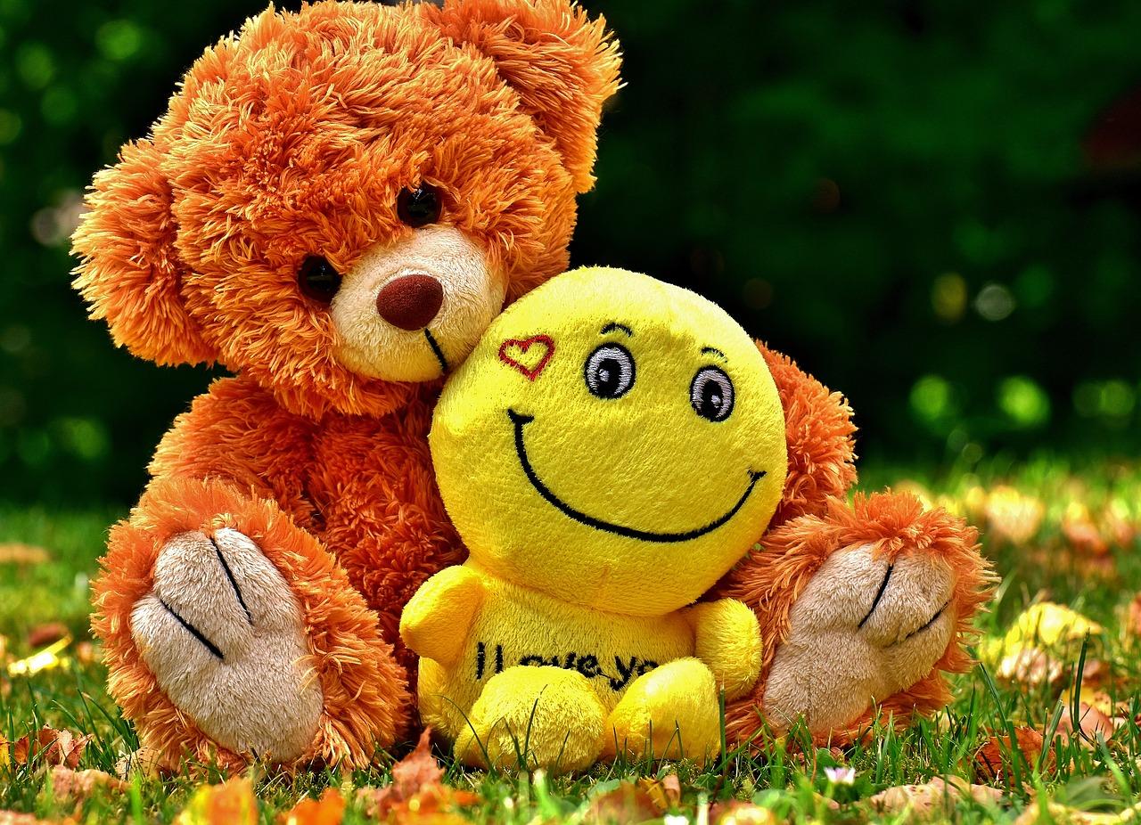 teddy-2468065_1280