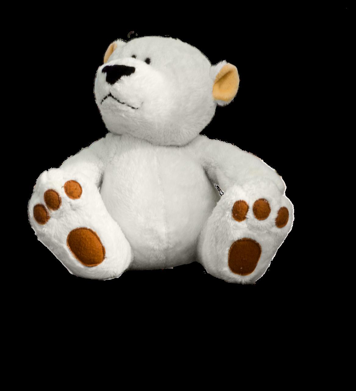 teddy-1313631_1280