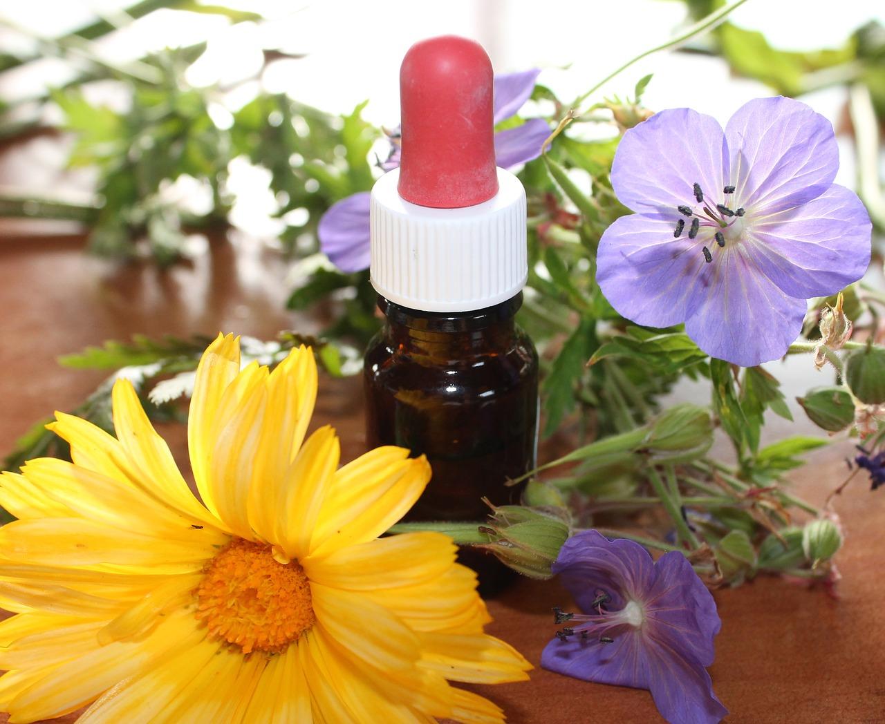 natural-medicine-1738161_1280